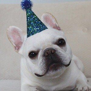 Nachodogg Age, Birthday, Birthplace, Bio, Zodiac &  Family